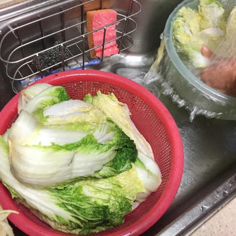 5. Let sit to allow cabbage leaves to wilt.